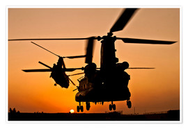 Póster Premium  Two Royal Air Force CH-47 Chinooks
