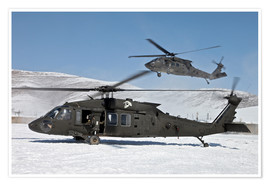 Póster Premium  Two US Army UH-60 Black Hawk helicopter
