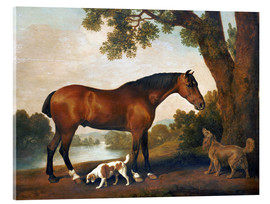 Quadro em acrílico  Horse and two dogs - George Stubbs