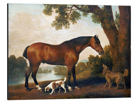 Quadro em alumínio  Horse and two dogs - George Stubbs