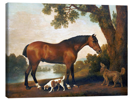 Quadro em tela  Horse and two dogs - George Stubbs