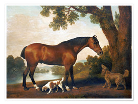 Póster Premium  Horse and two dogs - George Stubbs