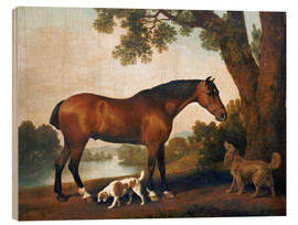 Quadro de madeira  Horse and two dogs - George Stubbs