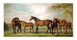 Póster Premium Mares, foals and an approaching storm