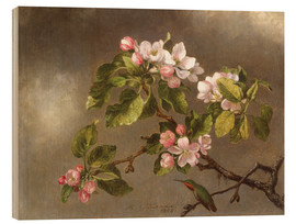 Quadro de madeira  Apple Blossoms and a Hummingbird - Martin Johnson Heade