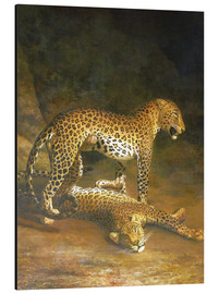 Quadro em alumínio  Two Leopards lying in the Exeter Exchange - Jacques Laurent Agasse