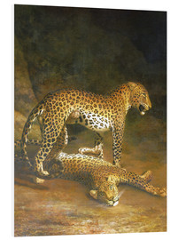 Quadro em PVC  Two Leopards lying in the Exeter Exchange - Jacques Laurent Agasse