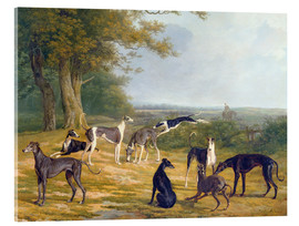 Quadro em acrílico  Nine Greyhounds on a landscape - Jacques Laurent Agasse