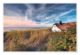 Póster Premium House beside the sea (Ahrenshoop/Darss)