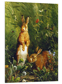 Quadro em PVC  Rabbits in a meadow - Olaf August Hermansen