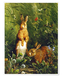 Póster Premium  Rabbits in a meadow - Olaf August Hermansen