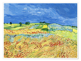 Póster Premium  Fields with Blooming Poppies - Vincent van Gogh