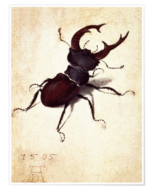 Póster Premium Stag beetle