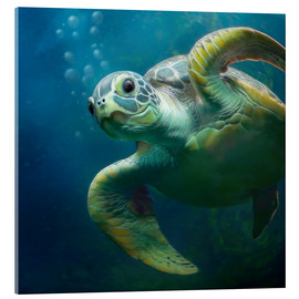 Quadro em acrílico  Bubbles, the cute sea turtle - Photoplace Creative