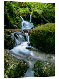 Quadro em acrílico  Little Waterfall in Black Forest - Andreas Wonisch