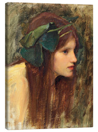Quadro em tela  A Study for a Naiad - John William Waterhouse