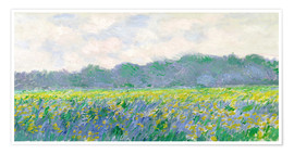 Póster Premium  Field of Yellow Irises in Giverny - Claude Monet