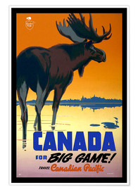 Póster Premium  Canada - big game - Travel Collection