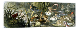 Quadro em acrílico  Water-Lilies and Water Fairies - Richard Doyle