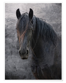 Póster Premium Horse with no name