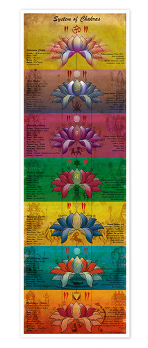 Póster Premium System of Chakras Contrastive View Yoga Poster