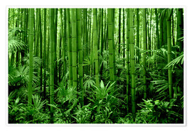 Póster Premium  bamboo forest - GUGIGEI