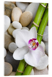 Quadro em acrílico  Bamboo and orchid - Andrea Haase Foto