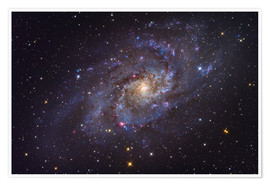 Póster Premium The Triangulum Galaxy