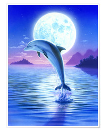 Póster Premium  Day of the dolphin - midnight - Robin Koni
