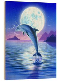 Quadro de madeira  Day of the dolphin - midnight - Robin Koni