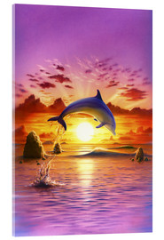 Quadro em acrílico  Day of the dolphin - sunset - Robin Koni