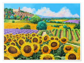Póster Premium  Vineyards and sunflowers in Provence - Jean-Marc Janiaczyk