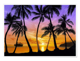 Póster Premium Palm beach sundown