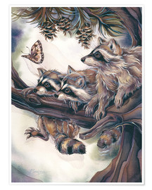 Póster Premium  Raccoons and butterfly - Jody Bergsma