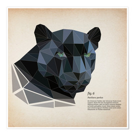 Póster Premium  fig6 polygon Panther square - Labelizer