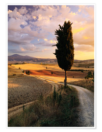 Póster Premium  Noite, em, a, val d'Orcia, tuscany - Matteo Colombo
