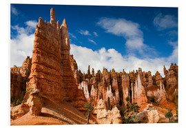 Quadro em PVC  Queen's garden trail at Bryce Canyon - Circumnavigation