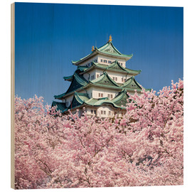 Quadro de madeira  Nagoya castle with cherry blossom in spring - Jan Christopher Becke