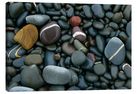 Quadro em tela  Pebbles on a beach - Keith Wheeler