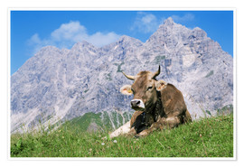 Póster Premium Cow on a mountain meadow