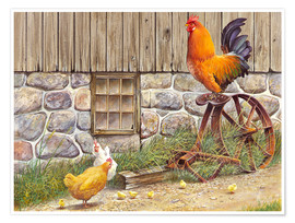 Póster Premium  King Rooster and Hens - John Bindon
