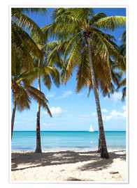 Póster Premium  Palm beach with sailboat, Martinique - Matteo Colombo