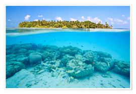 Póster Premium  Reef and tropical island, Maldives - Matteo Colombo