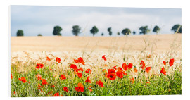 Quadro em PVC  Poppies on the sidelines - Matthew Williams-Ellis
