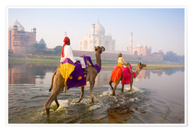 Póster Premium  Camel riders at the Taj Mahal - Gavin Hellier