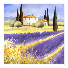 Póster Premium  Light of Provence - Franz Heigl