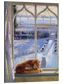 Quadro em alumínio  Cat in the Window - Timothy Easton