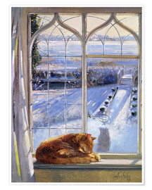Póster Premium  Cat in the Window - Timothy Easton