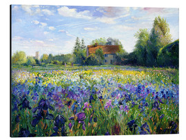 Quadro em alumínio  Field of flowers in the sunset - Timothy Easton