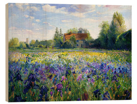 Quadro de madeira  Field of flowers in the sunset - Timothy Easton